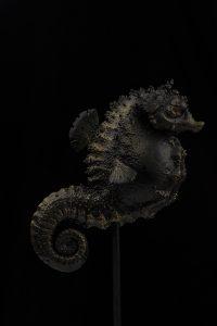 Seahorse by Katyushka Art Dolls